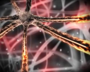 Black background orange microscopic nervous system.jpeg